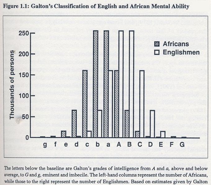 Les différents grades d'intelligence pour les anglais et les africains